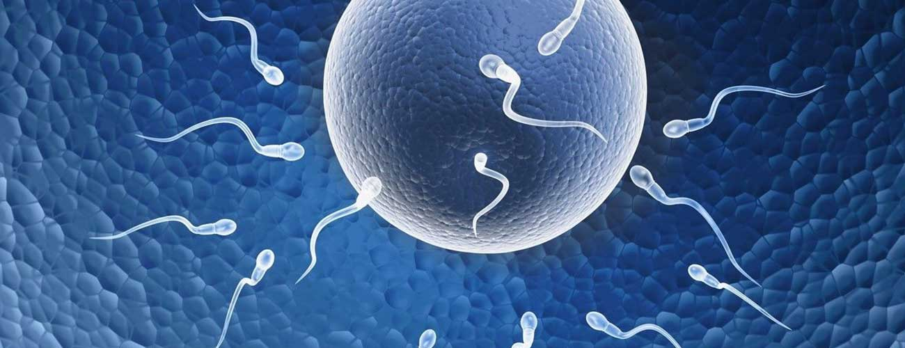Top IVF Hospitals in India